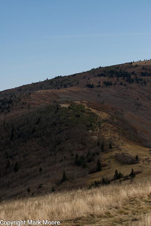 Appalachian Trail, south of Roan Mountain Pass.