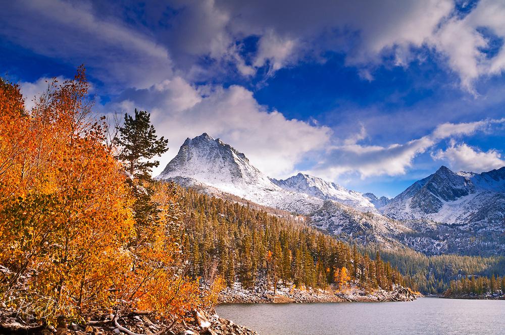 Fall aspens under Sierra peaks from South Lake, John Muir Wilderness, Sierra Nevada Mountains, California USA