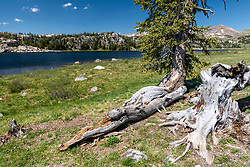 Long Lake along the Beartooth highway, the scenic byway that goes from Red Lodge Montana, through a bit of Wyoming ending back in Cooke City Wyoming