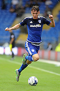 Cardiff City's Joe Mason in action. Skybet football league championship match, Cardiff city v Wolverhampton Wanderers at the Cardiff city stadium in Cardiff, South Wales on Saturday 22nd August 2015.<br /> pic by Carl Robertson, Andrew Orchard sports photography.