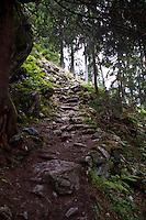 Golzern, Switzerland - the path down into the valley.