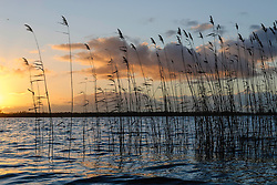 Loenderveense plas, Oud Loosdrecht, Wijdemeren, Noord Holland, Netherlands
