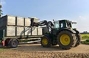 Nederland, Siebengewald, 3-10-2014Poolse arbeiders oogsten bloemkool. Deze wordt meteen gehakt, gesneden zodat kleine bloemkooltjes ontstaan die direct door de levensmiddelenfabrikant geblancheerd en ingevroren worden.Bloemkoolveld in grensregio Noord LimburgFarm field of Cauliflowers is harvested.FOTO: FLIP FRANSSEN/ HOLLANDSE HOOGTE
