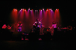Rusted Root At The Orpheum Theatre