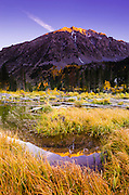 Evening light reflected in beaver pond, Lundy Canyon, Inyo National Forest, California USA