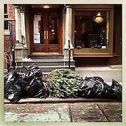 O Christmas Tree<br /> <br /> New York, U.S. - A discarded Christmas tree sits discarded along the sidewalk along the sidewalk of New York City awaiting pick-up<br /> <br /> O' Christmas Tree - Launched December 24, 2013 - The Christmas tree has become so popular that 8 in 10 Americans say they plan to put one up this year, according to Pew Research Center, bringing the annual U.S. holiday tree market to $1 billion. For the next week, everyone who celebrates the Christmas holiday will be doting over these brightly lit holiday centerpieces until Christmas finally comes. Then, when it's all over, they'll be just as quickly forgotten. The contrast between affection and then abandonment is central to Bryan Smith's set of images titled 'O Christmas Tree'. Bryan wandered the streets the of New York City creating these beautiful images of abandoned Christmas trees at the end of last years festive season.The tree tradition began in the Middle Ages in Roman Catholic countries, when the Feast Day of Adam and Eve was celebrated on Dec. 24. The Germans would do a procession carrying ''paradise trees'' with apples on them representing the forbidden fruit. In England during the Victorian era, when Queen Victoria married Prince Albert, a German, he brought Christmas trees into their palaces. The first official Christmas tree in the USA was lit up in 1842 In Williamsburg, Virginia. <br /> ©Exclusivepix