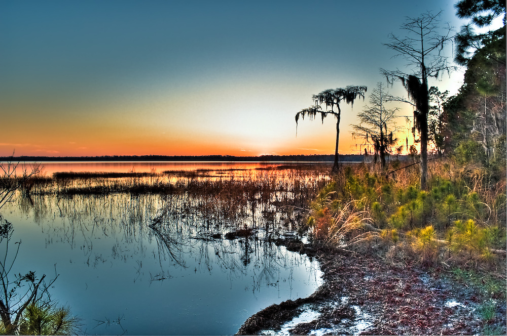 Sunset over Ocean Pond - deep in the Osceola National Forest.