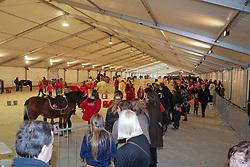 Paddox<br /> Flanders Christmas Jumping <br /> CSI Mechelen 2012 <br /> © Dirk Caremans