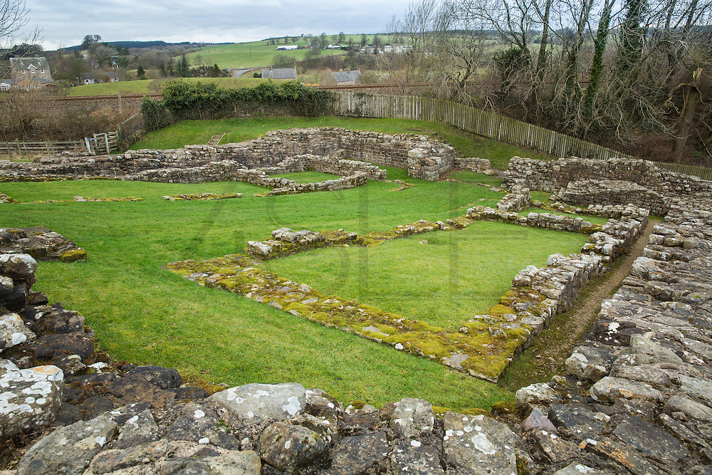 view of the Hadrian's wall near Brampton. Ruins of Poltross Burn Milecastle