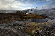 Algae grows in the geothermal streams at Geysir in South-West Iceland