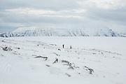 Michelle Blade and Robin de Vries ascend towards Nordenskioldfjellet, Svalbard.