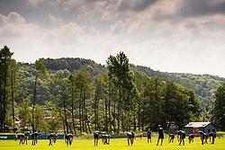 May 29, 2018 - BÃ¥Stad, Sverige - 180529 Sveriges spelare under Sveriges fotbollslandslags träning den 29 maj 2018 i BÃ¥stad  (Credit Image: © Petter Arvidson/Bildbyran via ZUMA Press)