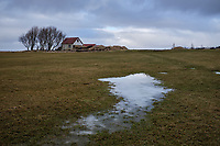 Ice on grass, farm in background, Seljaland, South Iceland.