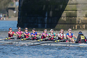 Mortlake/Chiswick, GREATER LONDON. United Kingdom. Vesta Rowing Club, W.MasA.8+, competing in the 2017 Vesta Veterans Head of the River Race, The Championship Course, Putney to Mortlake on the River Thames.<br /> <br /> <br /> Sunday  26/03/2017<br /> <br /> [Mandatory Credit; Peter SPURRIER/Intersport Images]