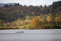 Rydal Water, Cumbria autumn woodlands cormorants