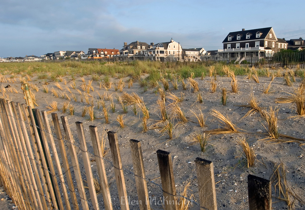 Rows of sea grass, planted to reduce beach erosion in Cape May, New Jersey
