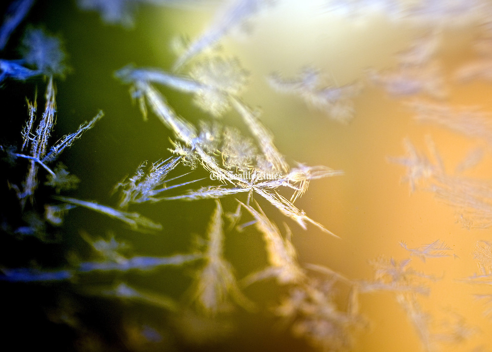 Ice crystals formed on a windshield as temperatures dipped to 20 degrees in Seattle. (Mike Siegel / The Seattle Times)