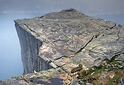 Sheep look 1959 feet down to Lysefjord from the Pulpit (Prekestolen), in Forsand municipality, Rogaland county, Ryfylke traditional district, Norway, Europe. 1981 photo. The nearest city is Jørpeland, in Strand municipality.
