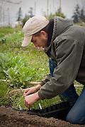 Oregon Tilth Education Farm