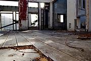 500px Photo ID: 4400814 - floor of abandoned house, brisbane, ca