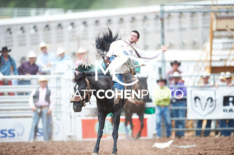 Bareback rider Jerod Johnston of Kingfisher, OK rides Pine Cone at the Pikes Peak or Bust Rodeo in Colorado Springs, CO.<br /> <br /> <br /> UNEDITED LOW-RES PREVIEW<br /> <br /> <br /> File shown may be an unedited low resolution version used as a proof only. All prints are 100% guaranteed for quality. Sizes 8x10+ come with a version for personal social media. I am currently not selling downloads for commercial/brand use.