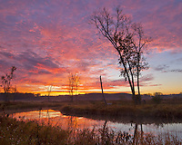 The sky turns a bright red as the sun rises at Glacial Park, Illinois. The colorful sky is reflected in Nippersink Creek.