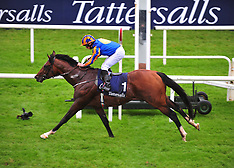 Curragh Races - Tattersalls Irish 2000 Guineas Raceday, 27 May 2017