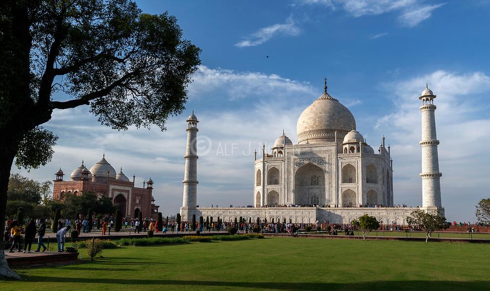 The famous mausoleum Taj Mahal, Agra, Uttar Pradesh, india.