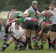 Photo - Peter Spurrier<br /> 08/02/2003 <br /> RUGBY - NEC Harlequins v Sale Sharks<br /> Andy Titterrell