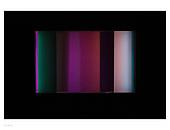 regenboog |4press