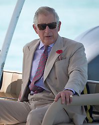 The Prince of Wales visits Bu Tinah Island, a UNESCO protected marine area in the United Arab Emirates, during the royal tour of the Middle East.