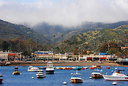 Avalon Harbor Catalina Island