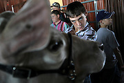 Shelby Womack, 15, of Nocona, Texas, takes a good look at his Grand Champion Steer, Silver Bullet, to make sure it looks perfect before the livestock auction at the State Fair of Texas in Dallas October 1, 2010.  It was auctioned off and sold to 2 buyers for a record-breaking $101,000.   (Courtney Perry/The Dallas Morning News) 10022010xBRIEFING