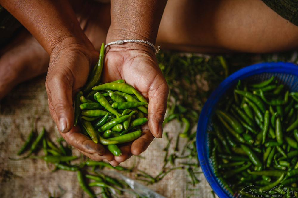 A woman sitting on the ground whilst holding a handful of green chillies, Pak Khlong Talat, Bangkok, Thailand