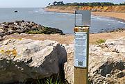Soft cliffs rapid coastal erosion on North Sea coastline, coast at Bawdsey, Suffolk, England, Uk PhotoPosts project to record change