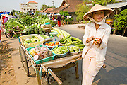 13 MARCH 2006 - CHAU DOC, AN GIANG, VIETNAM: A vendor sells fruit in a village near Chau Doc, Vietnam in the Mekong delta. The Mekong is the lifeblood of southern Vietnam. It is the country's rice bowl and has enabled Vietnam to become the second leading rice exporting country in the world (after Thailand). The Mekong delta also carries commercial and passenger traffic throughout the region.  Photo by Jack Kurtz