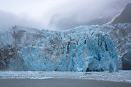 On board the 26 Glacier Cruise offered by Phillips Cruises and Tours in Prince William Sound, Alaska<br /> <br /> Photographer: Christina Sjögren<br /> <br /> Copyright 2019, All Rights Reserved