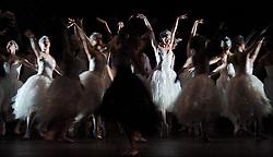 The Royal Ballet have launched their 2017/8 Programme today (5th April 2017) it includes a revival of Swan Lake which starts on 17th May 2018. <br /> <br /> <br /> <br /> Swan Lake <br /> The Royal Ballet, at the Royal Opera House, London, Great Britain <br /> 5th October 2012 <br /> <br /> rehearsal <br /> first night cast <br /> <br /> Marianela Nunez as Odette / Odile<br /> <br /> Thiago Soares as Prince Siegfried<br /> <br /> Elizabeth McGorigan as The Princess - Seigfried's Mother<br /> <br /> Christopher Saunders as An Evil Spirit <br /> <br /> Alastair Marriott as The Tutor<br /> <br /> Valeri Hristov as Benno <br /> <br /> Helen Crawford <br /> Yuhui Choe<br /> Alexander Campbell <br /> Tara Bhavani<br /> Nathalie Harrison <br /> <br /> David Pickering <br /> Ellie Young<br /> Tori Forsyth-Hecken<br /> Claire Calvert<br /> Melissa Hamilton <br /> Laura McCulloch <br /> Kristen McNally <br /> Ryoichi Hirano <br /> Kenta Kura<br /> Brian Maloney <br /> Emma Maguire<br /> Paul Kay <br /> Meaghan Grace Hinkis<br /> Elizabeth Harrod<br /> Sabina Westcombe<br /> <br /> Czardas<br /> Bennet Gartside<br /> Helen Crawford<br /> <br /> Neopolitan Dance<br /> Laura Morera<br /> Ricardo Cervera<br /> <br /> Spanish Dance<br /> Deirdre Chapman <br /> Itziar Mendizabal <br /> Johannes Stepanek <br /> Ryoichi Hirano <br /> <br /> ChoreographyMarius Petipa<br /> ChoreographyLev Ivanov<br /> Additional ChoreographyFrederick Ashton<br /> Additional ChoreographyDavid Bintley<br /> MusicPyotr Il'yich Tchaikovsky<br /> ProductionAnthony Dowell<br /> DesignsYolanda Sonnabend<br /> Lighting designMark Henderson<br /> Production researchRoland John Wiley<br /> StagingChristopher Carr<br /> <br /> <br /> Photograph by Elliott Franks