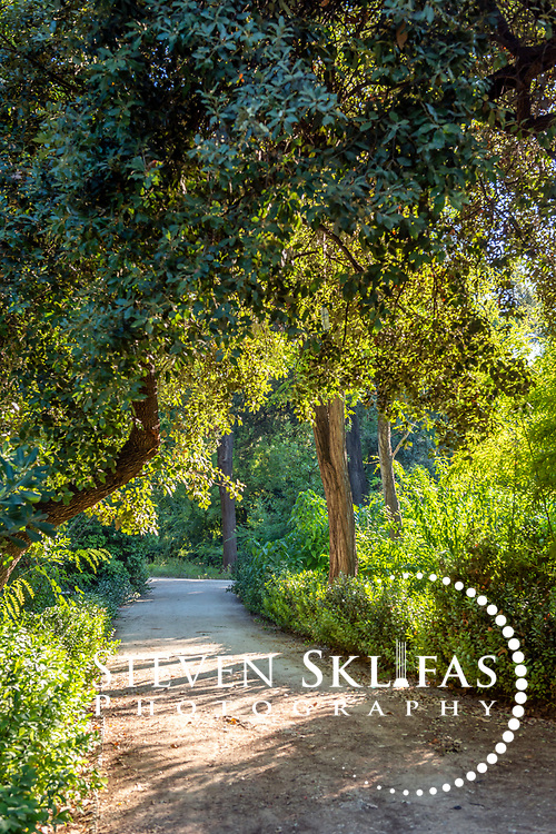 Athens. Greece. View of a leafy, green and shady pathway in the grounds of the National Gardens, a vast green refuge and oasis in the centre of Athens.