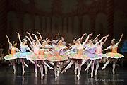 Bay Pointe Ballet performs the Nutcracker at the San Mateo Performing Arts Center in San Mateo, California, on December 21, 2013. (Stan Olszewski/SOSKIphoto)