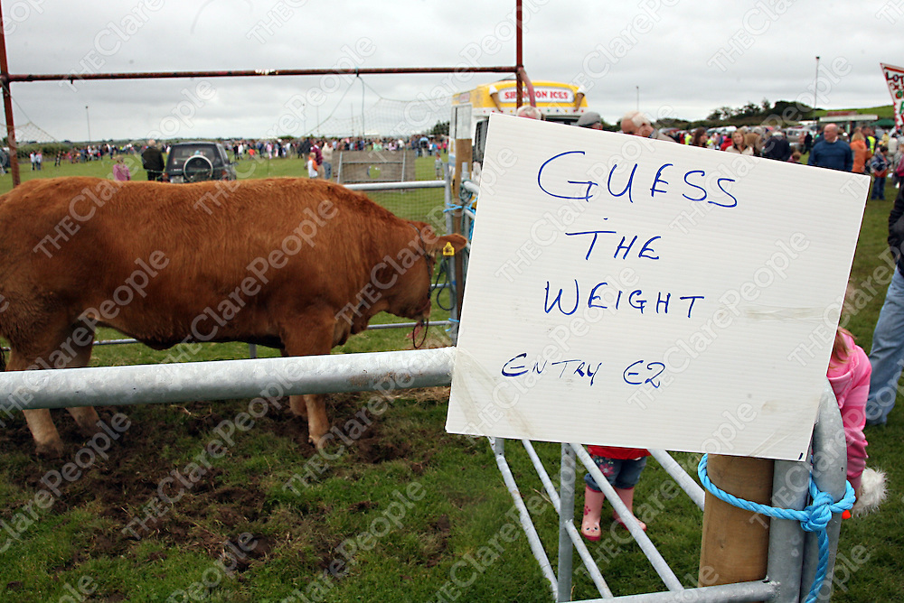 There was plenty guesses made on this one at the Mullagh Show on Sunday.<br /><br />Photograph by Yvonne Vaughan.