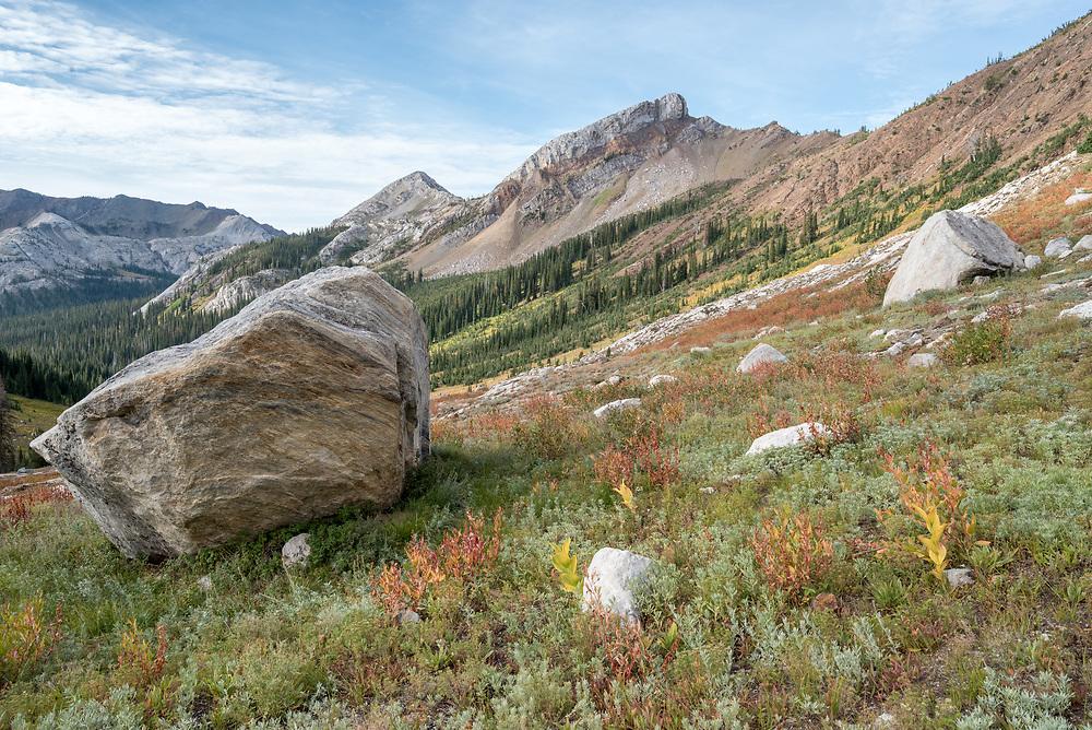 Boulders in a subalpine meadow, Wallowa Mountains, Oregon.