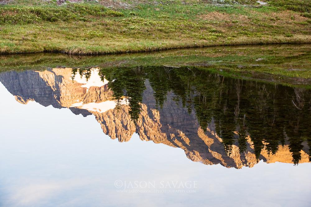 Reflection in pond near Hidden Lake, Glacier National Park