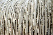 The Komondor is a large, white-colored Hungarian breed of livestock guardian dog with a long, corded coat. Close up of the coat