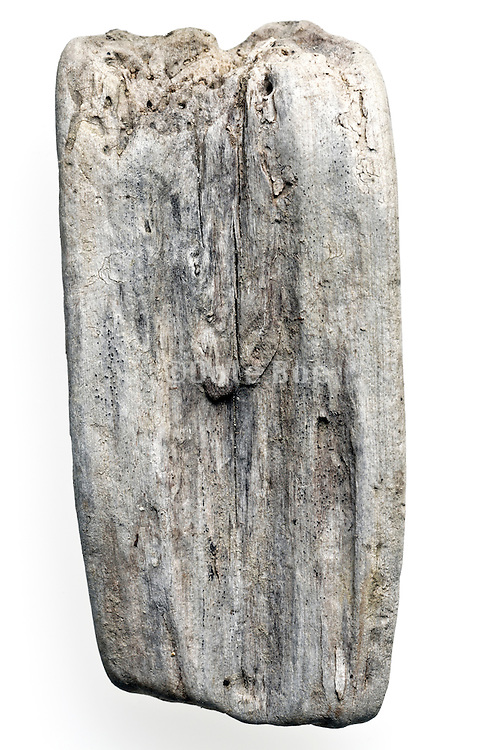 wood fragment natural smoothed