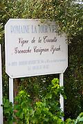 Domaine la Tour Vieille. Collioure. Roussillon. France. Europe.