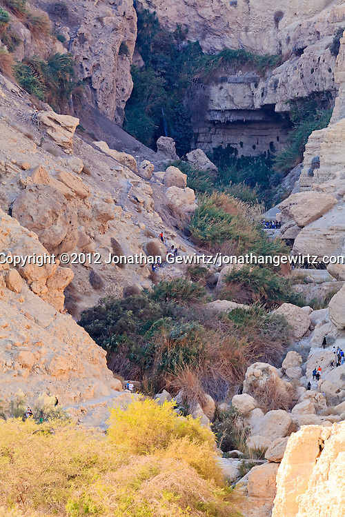Visitors to the Ein Gedi nature preserve walk on trails along Nahal David, the river at the bottom of the scenic canyon terminating at the David Falls. WATERMARKS WILL NOT APPEAR ON PRINTS OR LICENSED IMAGES.