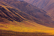 Ogilvie Mountains along the Dempster Highway<br />  Tombstone Territorial Park<br /> Yukon<br /> Canada