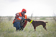 SHOT 5/9/20 8:57:15 AM - Various pointing breeds compete in the Vizsla Club of Colorado Licensed Hunt Test Premium at the Rocky Mountain Sporting Dog Club Grounds in Keenesburg, Co. (Photo by Marc Piscotty / © 2020)