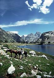 Horseback rider takes a moment to admire Lake Solitude in the Grand Teton Mountains